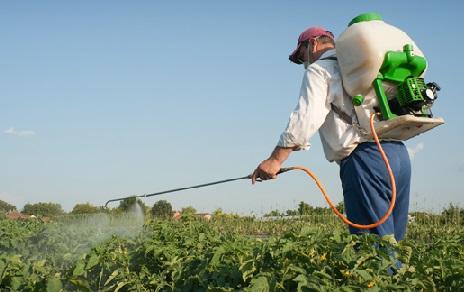 Resistencia de insectos a insecticidas