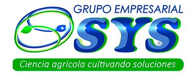 Grupo Empresarial SYS